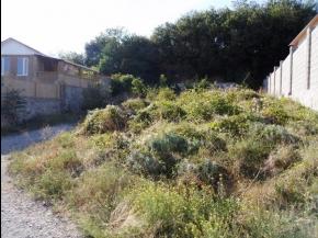 Снять квартиру в Ялте - Купить земельный участок в  Ялте, пгт Кореиз